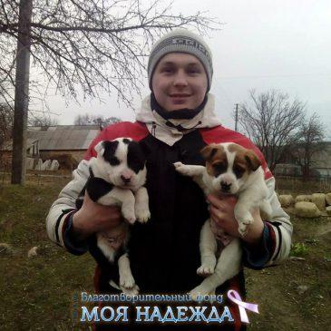Касяненко Владислав нуждается в нашей с вами помощи. К сбору  45  000 грн